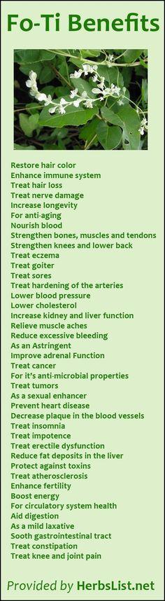 Fo-Ti Benefits