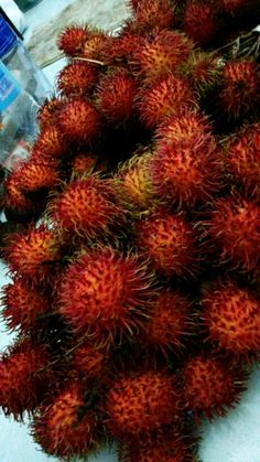 Rambutan indonesia