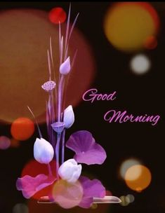 Good Morning Pictures, Images, Photos - Page 2 Good Morning Monday Images, Good Morning Beautiful Pictures, Good Morning Happy Saturday, Good Morning Images Flowers, Latest Good Morning Images, Special Good Morning, Good Morning Gif, Good Morning Picture, Good Morning Greetings