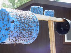 Summer is here, and it's horse fly, deer fly, moose fly and speckled wing fly season! Homemade Fly Traps, Homemade Fly Spray, Horsefly Trap, Fly Control, Pest Control, Mosquito Control, Bug Trap, Get Rid Of Flies, Chicken Pen