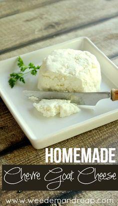 Homemade-Goat-cheese-Chevre
