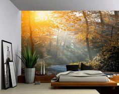 Sticker Mural soleil rayons Forest Creek - grande murale, papier peint en vinyle auto-adhésif, peler et coller tissu