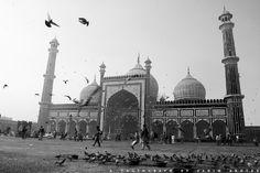 Jamia Masjid, New Delhi, India