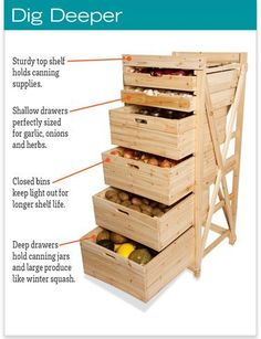 Deep Drawer Vegetable Storage rack from Gardener's Supply - new for Fall Harvest 2016
