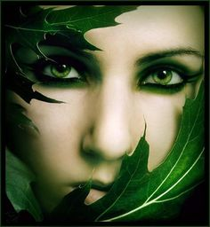 Nature portrait close up Go Green, Green Eyes, Green Colors, Eye Colors, Eye Art, Beautiful Eyes, Amazing Eyes, Shades Of Green, My Favorite Color