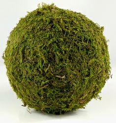 """Moss Balls 6"""" Preserved Moss for Flower Girl Pomander maybe?"""