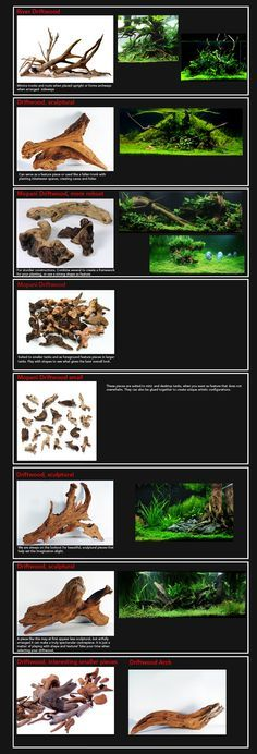 Your guide to driftwood for aquascaping or just for a cool affect in an aquarium. Can't wait to use this for my 20 gallon I am setting up