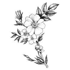 Pin by lara machado on ideias de tatuagem flower tattoos, tattoos, tattoo d Flower Tattoo On Side, Flower Tattoo Drawings, Flower Tattoo Shoulder, Flower Tattoo Designs, Tattoo Designs Men, Flower Tattoos, Girls With Sleeve Tattoos, Tattoos For Guys, New Tattoos
