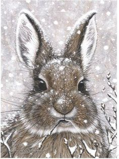 snow bunny is creative inspiration for us. Get more photo about diy home decor related with by looking at photos gallery at the bottom of this page. We are want to say thanks if you like to share this post to another people via your facebook, pinterest, google plus or …