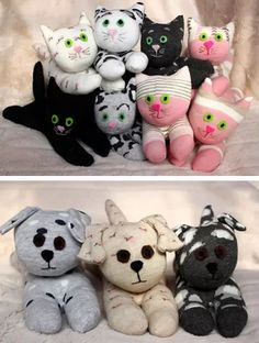 Sock Kittens and Puppies