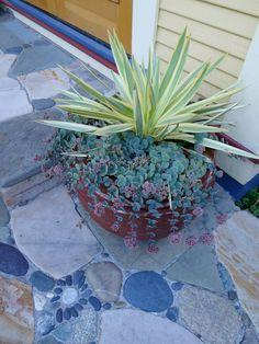 Jeffrey Bale Pebble Mosaic - the bigger stones with just a few for interest looks do-able Mosaic Walkway, Pebble Mosaic, Mosaic Garden, Garden Art, Garden Paths, Garden Landscaping, Garden Design, Garden Ideas, Succulent Terrarium