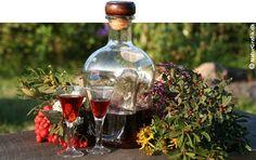 Kryddersnaps – natur på flaske | NaturGuide.dk - Danmarks natur på nettet
