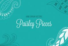 Hand Drawn Paisley Pieces ~~ Set of 20 hand-drawn paisley shapes and doodles. Great for organic patterns and backgrounds.   Contains AI file (CS+) and an EPS 10 file in zipped format.