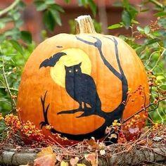 60 Best Pumpkin Decoration and Carving Ideas for Kids Halloween - firstmine Pumpkin Uses, Pumpkin Art, Cat Pumpkin, Pumpkin Cookies, Pumpkin Bread, Pumpkin Recipes, Chip Cookies, Fairy Halloween Costumes, Fall Halloween