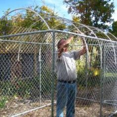 Dog Kennel Roof Ideas   Then PVC pipe was bent along the roof, again using zip ties to attach ...
