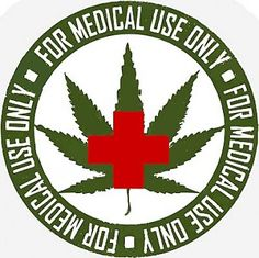 Will the cannabis be taken over by pharmacy? Hippie Movement, American Medical Association, Disease Symptoms, World Health Organization, Pharmacy, Cannabis, Drugs, State, Posters