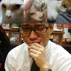 . さぁ、誰を選ぶ? Who do you choose? #ahhchan#あーちゃん #fuku#ふく#福 #mikan#みかん#🍊 #yutaka#豊 #cat#cats#愛猫#猫 #human#人間#変顔太郎 #☺#😉#😘