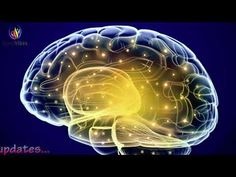 Activate Brain to Potential ✔ Gamma Binaural Beats ✔ Genius Brain Frequency by Binaural Beats Meditation (Good Vibes) This Session can be used for Study and Concentration also. This frequency will help you stimulate your brain so that it would Behavioral Neuroscience, Behavioral Therapy, Religious Experience, Adhd Symptoms, Working Memory, Binaural Beats, Fatigue, Spirituality, World Music