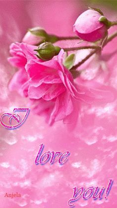 I love you forever Brianna xo Love You Gif, You Dont Love Me, Love You Images, Love You Forever, My Love, Beautiful Gif, Beautiful Roses, Pretty In Pink, Beautiful Flowers