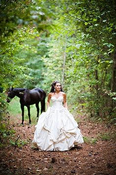 Bride and Horse: Inspiration for an upcoming shoot.
