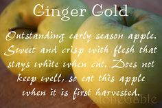 A is for Apple~ A Primer - StoneGable Ginger Gold Apple, Apple Varieties, I Am Amazing, Canning Recipes, Apple Recipes, Fruits And Veggies, Apples, Cooking Tips, Berries