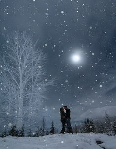 A Snowy Winter's Night Moonlit Moment Together