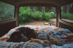 Tentporn – Ourwildways tumblr