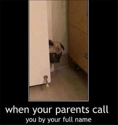 That moment when your parents are angry