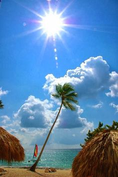 Beautiful Dominican Republic | Picture Store