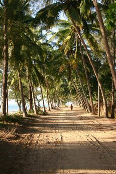 My beach road in Vilankulos