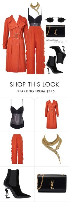 """""""Untitled #315"""" by operationvogue ❤ liked on Polyvore featuring Dolce&Gabbana and Yves Saint Laurent"""