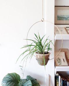 He encontrado este interesante anuncio de Etsy en https://www.etsy.com/es/listing/195307591/vintage-brass-minimalist-hanging-planter