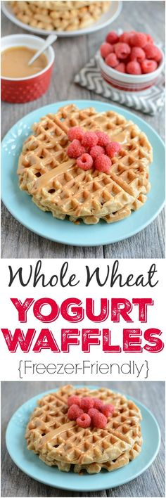 These Whole Wheat Yogurt Waffles are easy to make and packed with protein and fiber. Make a batch ahead of time to stock your freezer and reheat them for a quick breakfast or snack. Use DF yogurt/milk for dairy-free! Breakfast Desayunos, Clean Eating Breakfast, Healthy Breakfast Recipes, Clean Eating Recipes, Breakfast Ideas, Healthy Food, Clean Eating Waffles, Healthy Waffles, Healthy Recipes