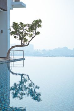 Reflections by Lucas & Joyce Photoworks edited by classy-captain Outdoor Pool, Outdoor Spaces, Outdoor Gardens, Outdoor Living, Rooftop Pool, Water Architecture, Modern Pools, Life Aquatic, Modern Landscaping