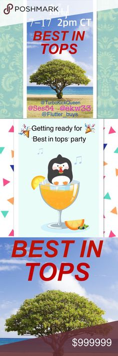 Party Time! Party 7-17 at 2pm central time. @ses54 , @flutter_buys , @ekw33 , & me! We'd love for you to join us. Hey, if you or a friend have an awesome top pic, tag me! Host picks don't pick themselves. Lol. I only choose from POSH COMPLIANT closets. Thank you all, Kris. 💕 None Other