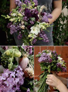 Purple passion.  Nice colors