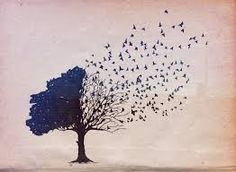 This is the picture that inspired my tattoo. It is a black silhouette that covers all of my lower back (the tree portion) and the birds are flying up to the top of my right shoulder. I love it!