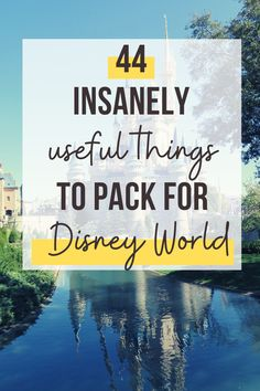 You know to pack your shorts and a swimsuit. THIS Disney packing list is a checklist of the stuff you'd never think to bring. Don't forget to pack our reader's no 1 comfort item!