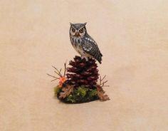 Screech Owl on Pine cone by Beth Freeman-Kane www.facebook.com/BethMin