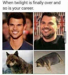 I don't like twilight AT ALL but this is hilarious. - Funny Husky Meme - Funny Husky Quote - The post I don't like twilight AT ALL but this is hilarious. appeared first on Gag Dad. Film Twilight, Twilight Jokes, Funny Twilight Quotes, Twilight Pictures, Twilight Sparkle, Most Popular Memes, Best Memes, Funniest Memes, Memes Humor