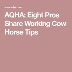 AQHA: Eight Pros Share Working Cow Horse Tips