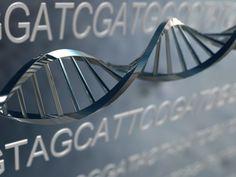 54 Best MTHFR images in 2018 | Disorders, Genetics, Thyroid
