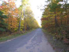 Fall at Lake Owen Resort Cable, Wisconsin