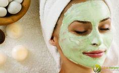 Avokado Maskesi Nedir? Avokado, vücut için lüzumlu pek fazlaca vitamin, mineral ve antioksidanları içeren tropik, leziz bir meyvedir. Avokadonun besin olarak tüketilmesinin yanı sıra pek fazlaca sağlık ve güzellik ürününde de kullanılıyor. Avokadonun kullanıldığı güzellik ürünleri saç kremleri, vücut kremleri ve banyo yağları olarak sıralanabilir.   #akne #avakado #avakado yapraginin faydalari #avakado yapragı #avakado yaprağının zararları