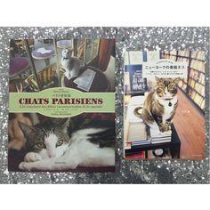 パリのネコか、ニューヨークのネコか、萌えすぎてそれが問題だ!