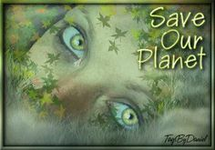 Save Our Planet