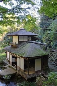 Go to a traditional tea ceremony in Japan