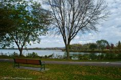 Park Bench in Lake Park - Winona, MN