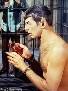 "Leonard Nimoy Spock Star Trek TOS season ""Patterns of Force"" 1968 shirtless First Officer Nims Star Trek Crew, Star Trek Spock, Star Trek Tv, Star Trek Movies, Leonard Nimoy, Star Trek Tos Episodes, Star Trek Theme, Star Trek Gifts, Start Trek"
