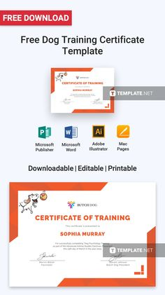 Blank Certificates Templates Free Download Impressive Free Death Certificate  Free Certificate Templates  Pinterest .